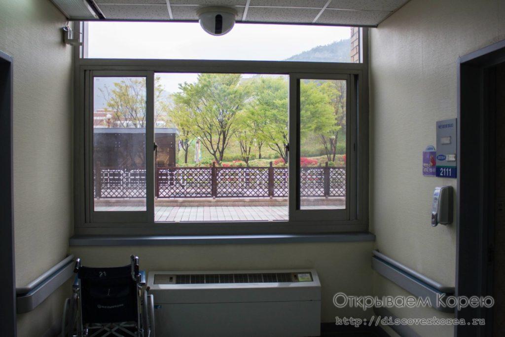 Вид из окна больницы