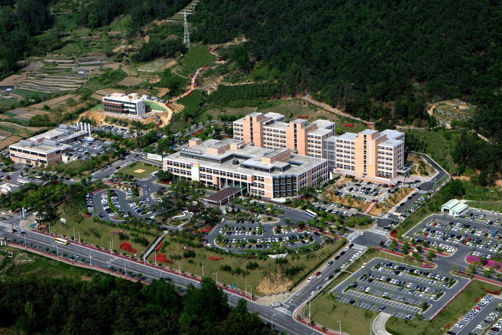 Чхоннам лечение в Корее
