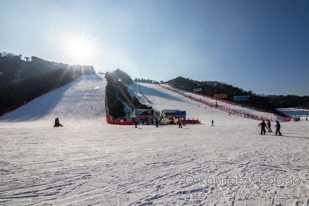 горные лыжи в Корее - склоны парка Вивальди