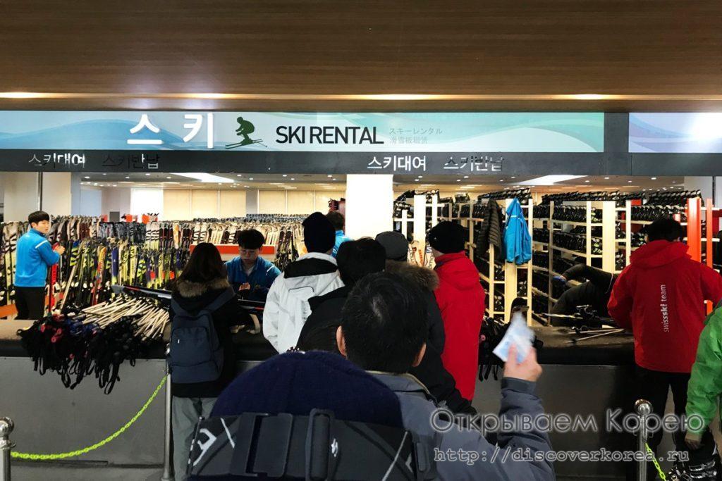 горные лыжи в Корее - выдача лыж