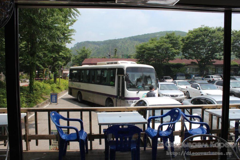 катаемся на пони-автобус