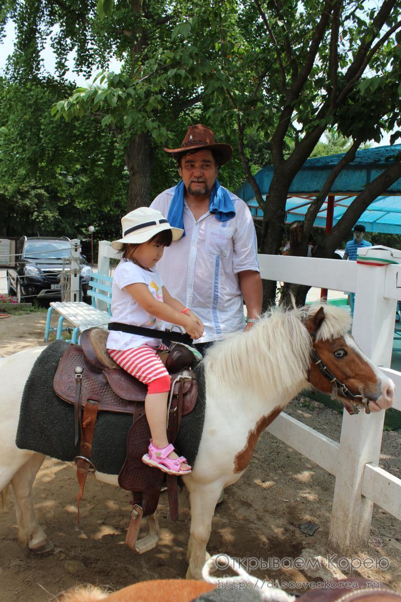 катаемся на пони-ковбой