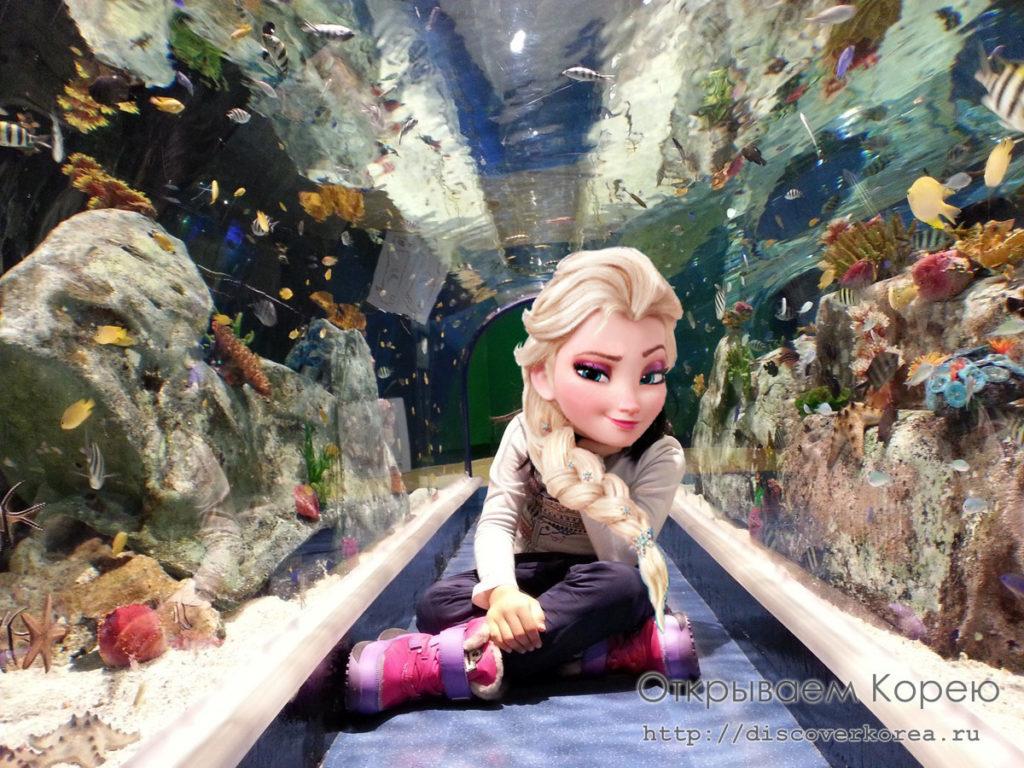 Lotte Tower Aquarium7